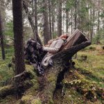 Karin Hedenborg bio photo